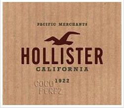 Take Pleasure in Dynamic Clothing with Hollister Coupons