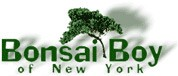 Bonsai Boy Coupon Codes