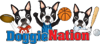 Up To 50% OFF On DoggieNation Clearance Items + FREE Shipping